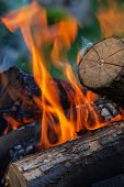 stock photo of firewood  - burning firewood in nature - JPG