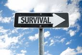 picture of survival  - Survival direction sign with sky background - JPG