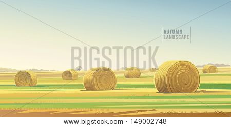 Autumn rural  landscape from agricultural field and bales of hay. Vector illustration.
