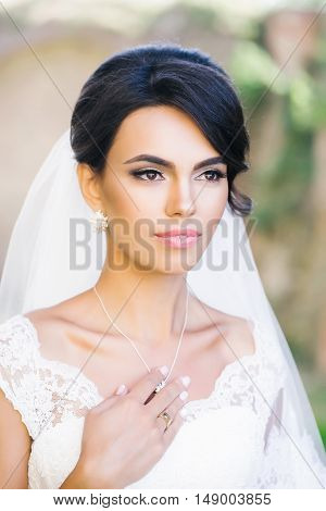 Beautiful Bride With Elegant Hairstyle