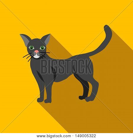 Halloween black cat icon in flat style isolated with long shadow vector illustration