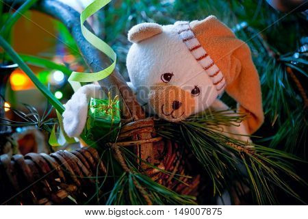 Bear cub with a gift under a fur-tree
