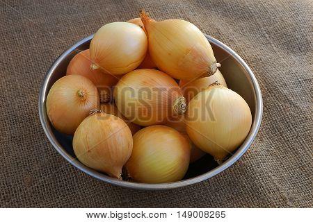 Aluminum bowl full of white onions on burlap