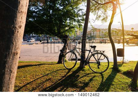 Bicycle in a green park under sunlight with silhouette trees