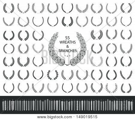 55 wreaths and branches set. Vector illustration.