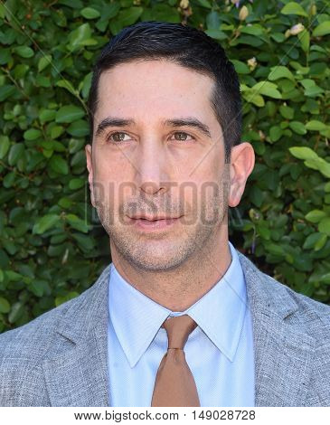 LOS ANGELES - SEP 25:  David Schwimmer arrives to The Rape Foundation Annual Brunch on September 25, 2016 in Beverly Hills, CA