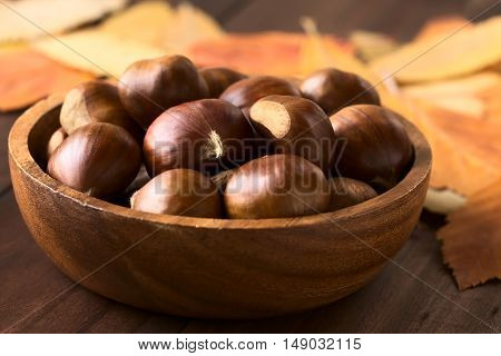 Chestnuts in wooden bowl photographed with natural light (Selective Focus Focus on the front of the chestnuts on the top)