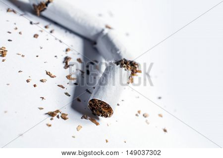 Broken Cigarette With Tobacco Pieces In Whitebox