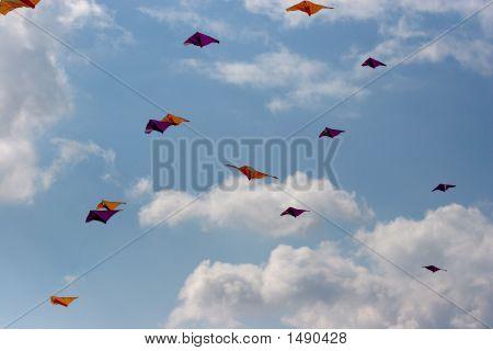 Kites In The Sky 2