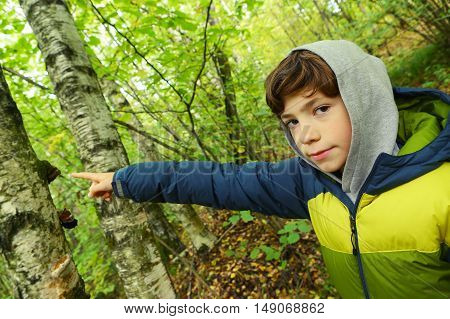 preteen boy close up portrait in the autumn forest hike