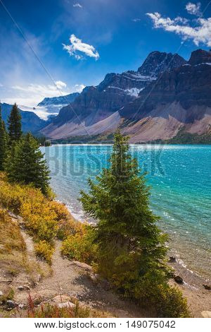 Rocky Mountains of Canada. Sunny day at Bow Lake. Emerald water surrounded by rocks and pine trees