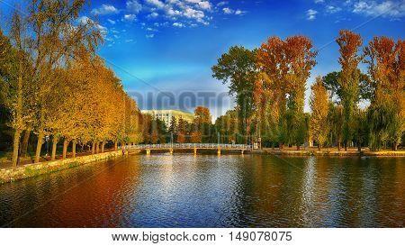 beautiful autumn park at sunny weather. Dramatic sky. Colourful folliage