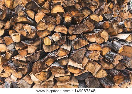 firewood birch, poplar, oak, pine stacked outdoors.
