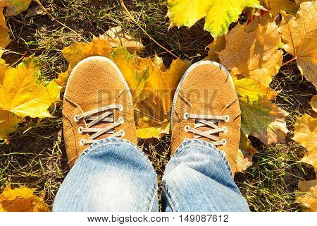 on fallen autumn leaves yellow suede boots top view