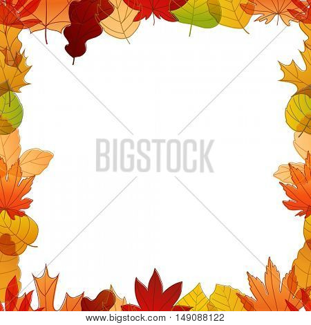 Different color autumn leaves vector frame