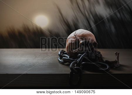 Skull on wood with a full moon.