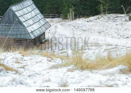 Winter snowy landscape with traditional log cabin and shake roof in conifer forest
