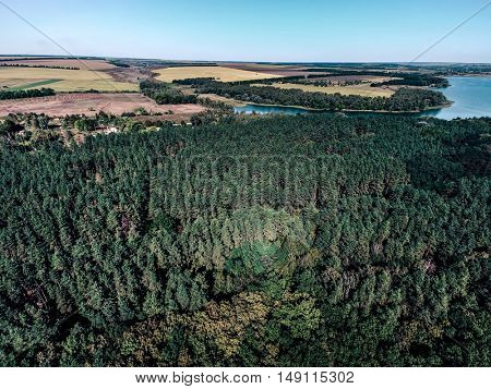 beautiful aerial view of forest and fields in countryside on the background