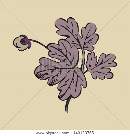 Floral bush retro on white background vector hand drawn decorative flower vintage contour closeup branch with bud print design