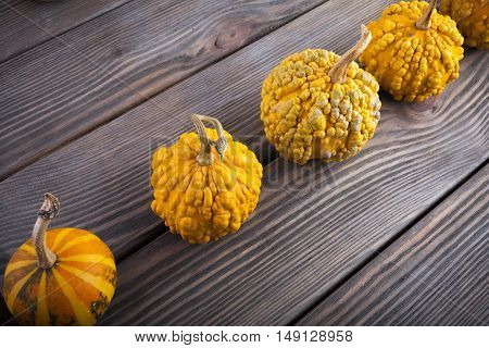 Pumpkins on wooden background. The decoration pumpkin