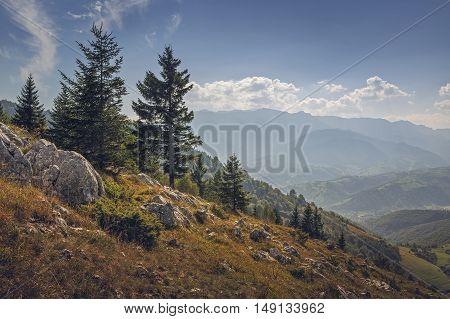 Autumn morning landscape with alpine wilderness in Bran-Rucar pass Transylvania region Romania. Picturesque travel destinations.