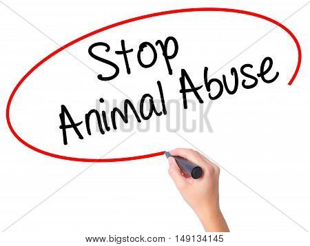 Women Hand Writing Stop Animal Abuse With Black Marker On Visual Screen