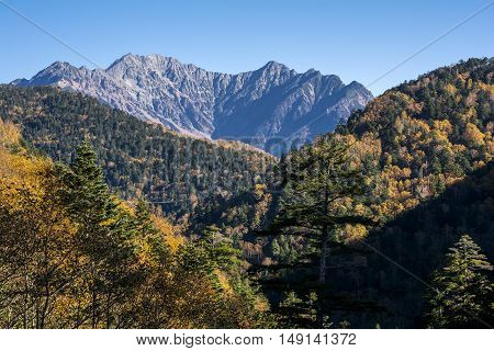 Autumn forest and Hotaka mountain range under blue sky in Nagano