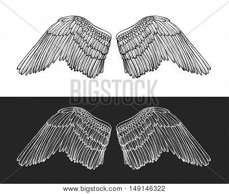 Wing Angel on Dark and Light Background Hand Draw Sketch. Element for Design. Vector illustration