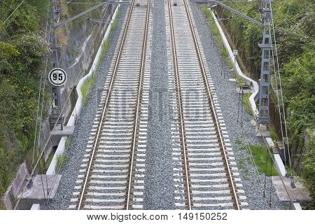 View from above of two train tracks among vegetation.