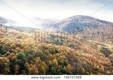 Mountains in Slovakia: Beautiful landscape in autumn. Colorful deciduous forest.