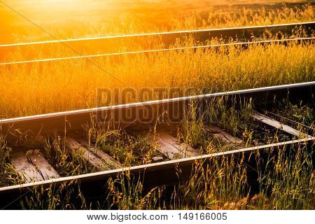 Old railroad in morning sunlight.. Selective focus