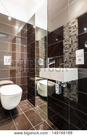 Brown Modern Toilet