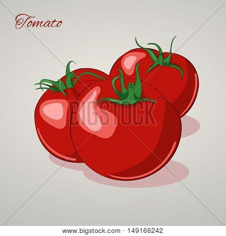 Cartoon sweet tomatoes isolated on grey background, vector illustration. Fruits and vegetables collection.