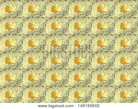 yellow maple leaf on pale yellow background a lot
