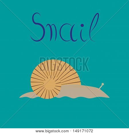 flat illustration on stylish background animal snail