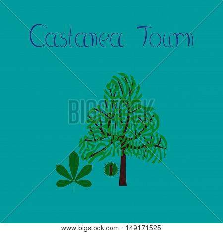 flat illustration on stylish background tree Castanea