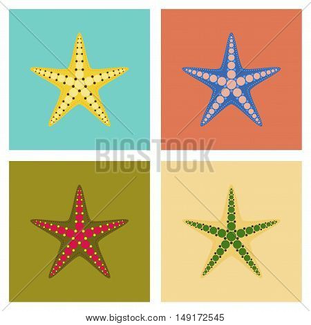 assembly of flat Illustrations nature tropical starfish