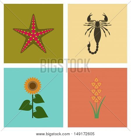 assembly of flat Illustrations nature tropical starfish Scorpio sunflower gladiolus