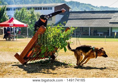 Mukachevo Ukraine - September 27. 2016: A policeman with his dog overcomes obstacles band during the first championship of the National Police of Ukraine with all-around dog handlers.