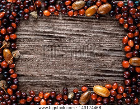 Autumn background: wood with red cranberries and acorns - space for text
