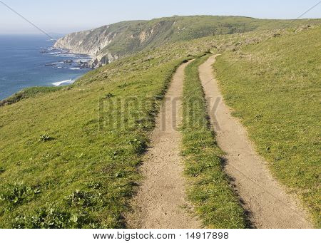 Coastal Path, Tomales Point