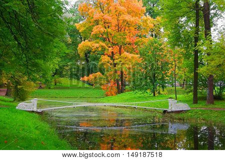 Autumn landscape and shaky bridge in Alexander Park in Tsarskoye Selo