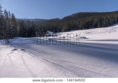Mountain glade in winter scenery. The Tatra Mountains