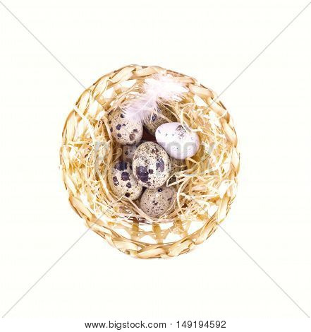 Nest With Quail Eggs. Quail Eggs In Hay Isolated.