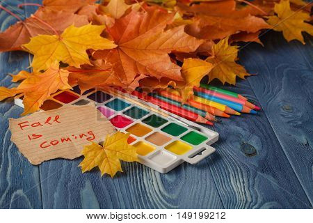 Pencil And Autumn Leaves On Wooden Table. Back To School Concept Retro Style.