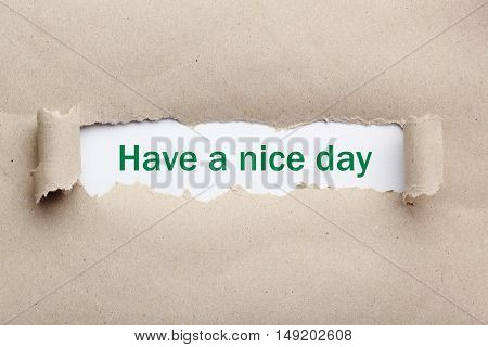 Torn brown paper for text, have a nice day