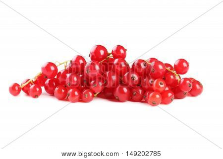 Red currants isolated on a white, close up