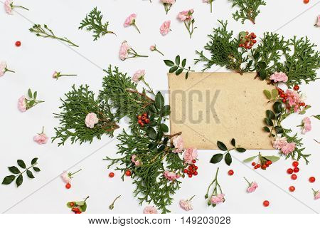 Pink roses the fairy cotoneaster red berries and thuja occidentalis Danica evergreen plants arranged around vintage card on white background. Flat lay top view.