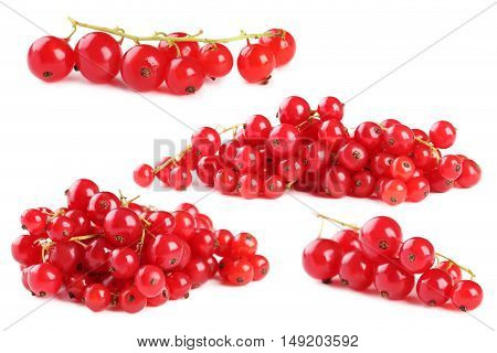 Red Currants Isolated On A White Background