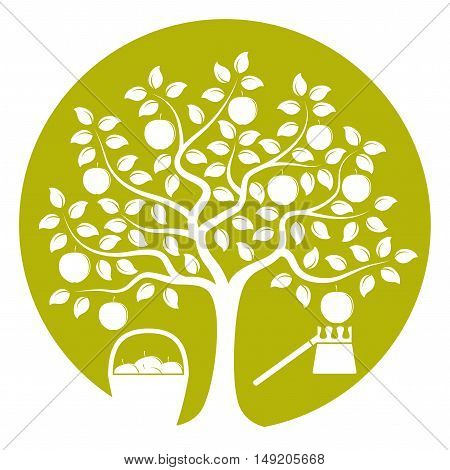 vector apple tree with basket of apples and fruit picker isolated on green round